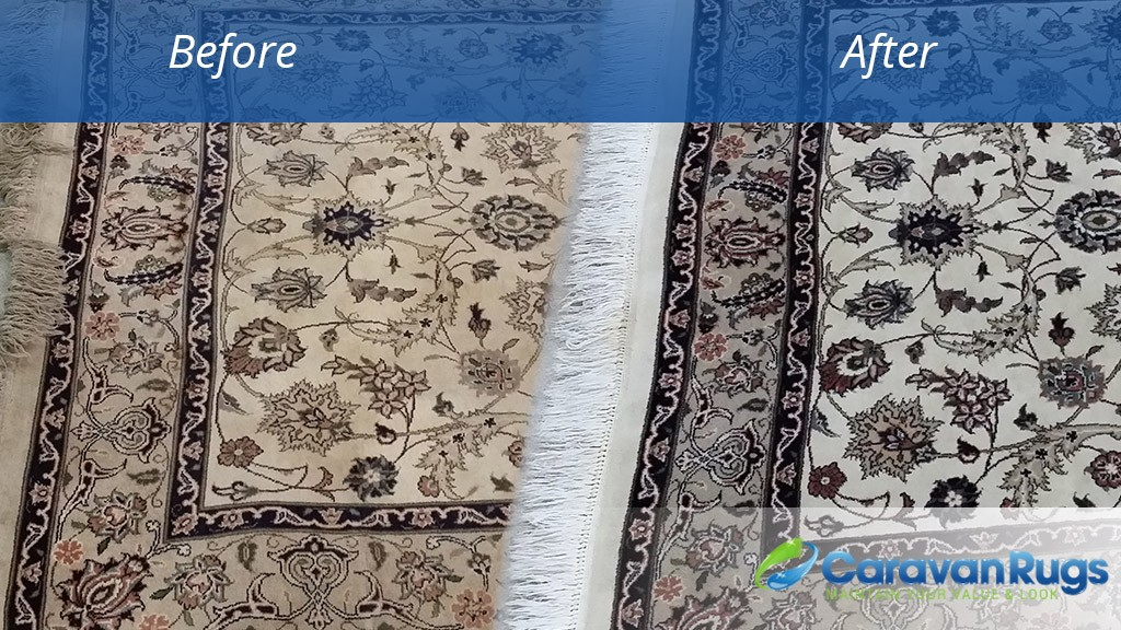 Rug Cleaning Raleigh Nc Rugs Ideas